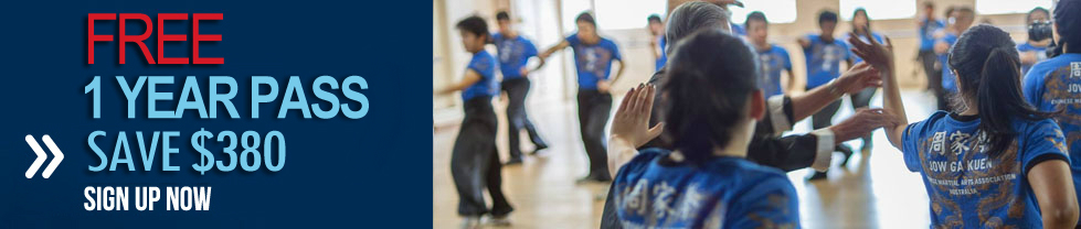 Get FREE 1 Year Pass to Martial Art Classes